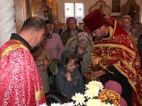 Ковчег с мощами святителя Луки архиепископа Крымского посетили г. Сергеевку, с. Тимирязево и с. Повозочное