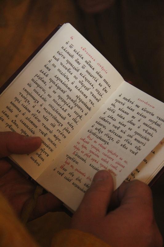 АРХИЕРЕЙСКОЕ БОГОСЛУЖЕНИЕ В 14-Ю НЕДЕЛЮ ПО ПЯТИДЕСЯТНИЦЕ