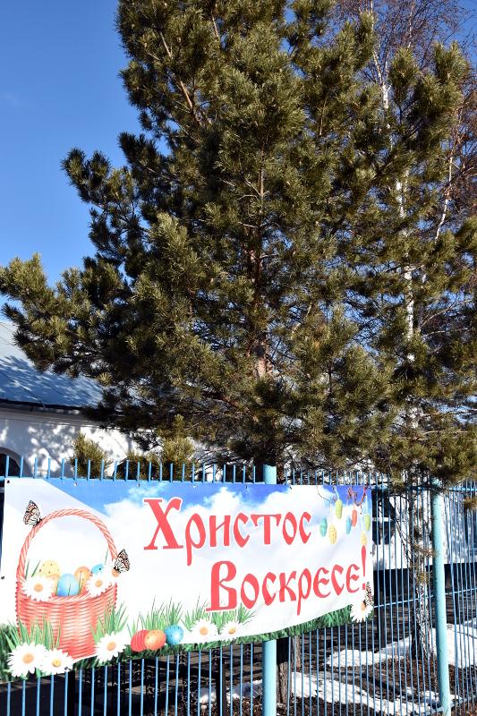 Служение епископа Владимира в Светлую Субботу