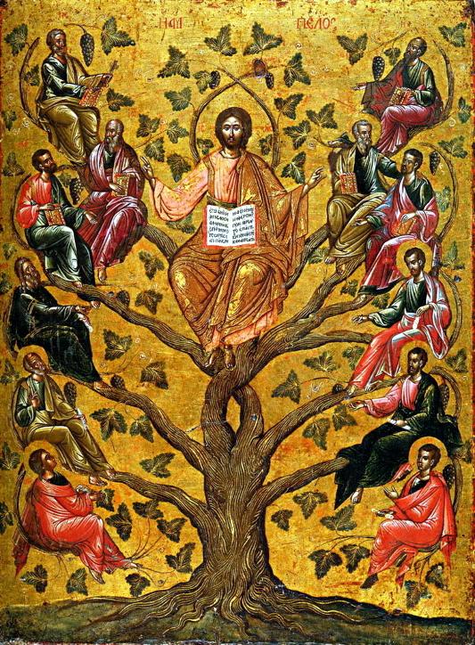 Архиерейская Литургия в Неделю 30-ю по Пятидесятнице перед Рождеством Христовым