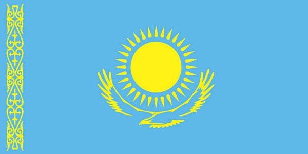 Официальное заявление Петропавловской и Булаевской епархии