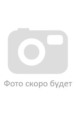 Диакон Алексий Васильевич Гаврилов